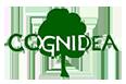 Cognidea